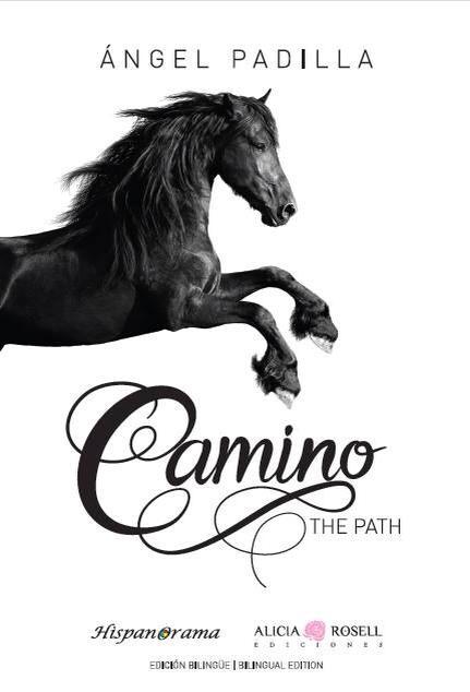 Camino - The Path