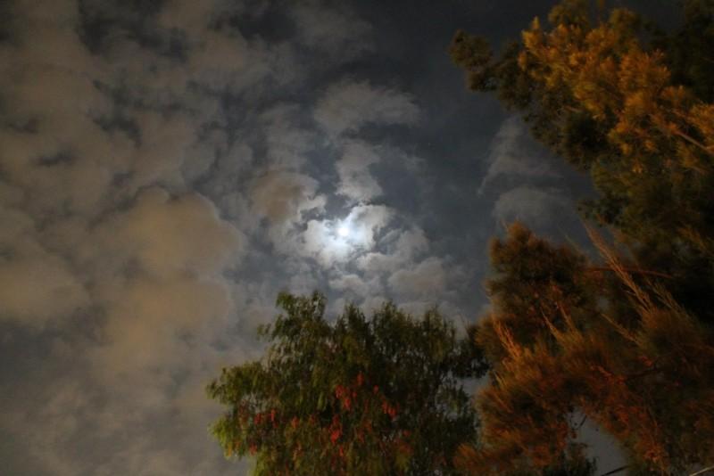 La luna de tus noches