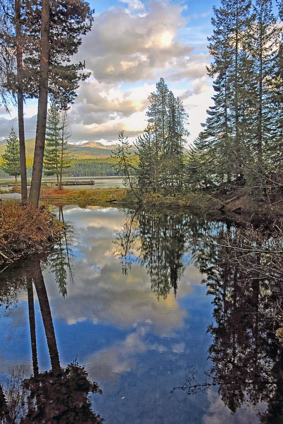 Elkins Creek