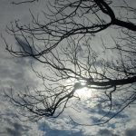 Los vientos de la dimensión azul
