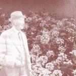 A un … imperceptible … Robert Walser /  Schwendimann (1917)